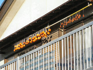 Making_dried_persimmon2